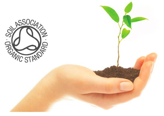 organic_ecologicalkids